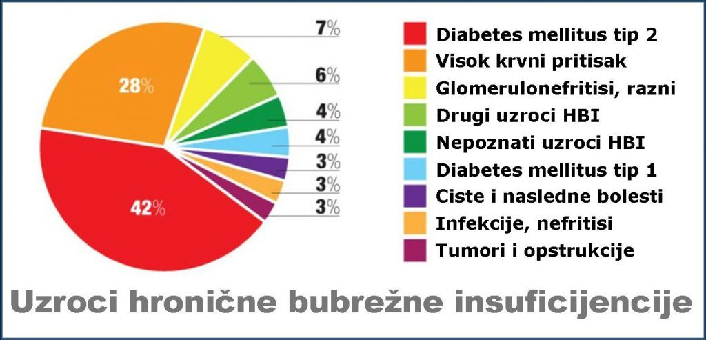 Svetski dan bubrega: dr Nedim Hamzagić, jedna od deset odraslih osoba ima oslabljenu bubrežnu funkciju